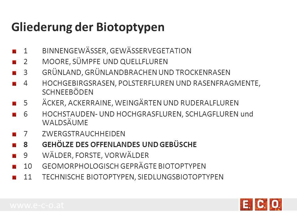 www.e-c-o.at Gliederung der Biotoptypen 1BINNENGEWÄSSER, GEWÄSSERVEGETATION 2MOORE, SÜMPFE UND QUELLFLUREN 3GRÜNLAND, GRÜNLANDBRACHEN UND TROCKENRASEN