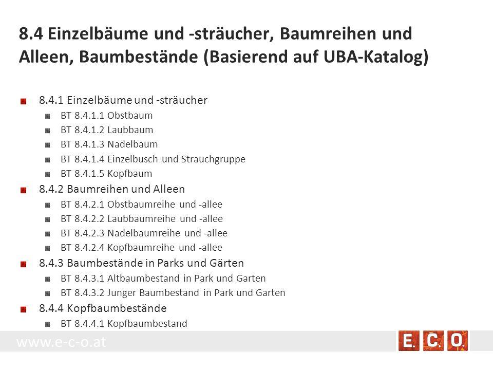 www.e-c-o.at 8.4 Einzelbäume und -sträucher, Baumreihen und Alleen, Baumbestände (Basierend auf UBA-Katalog) 8.4.1 Einzelbäume und -sträucher BT 8.4.1