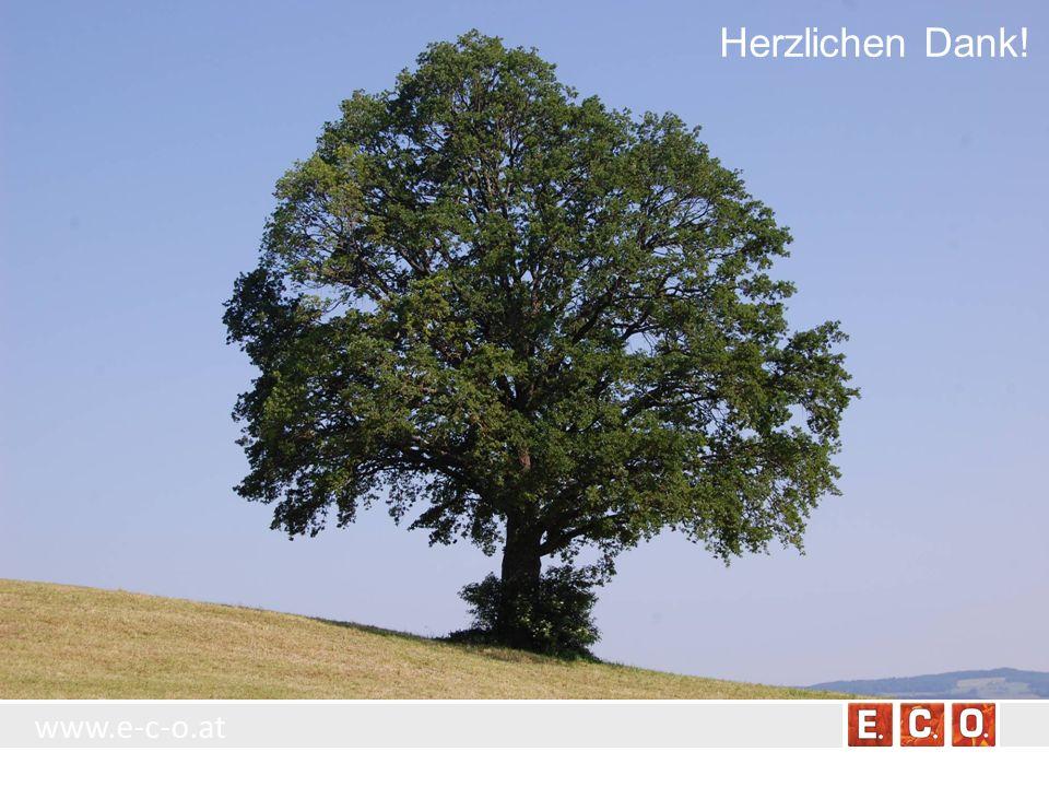 www.e-c-o.at Herzlichen Dank!
