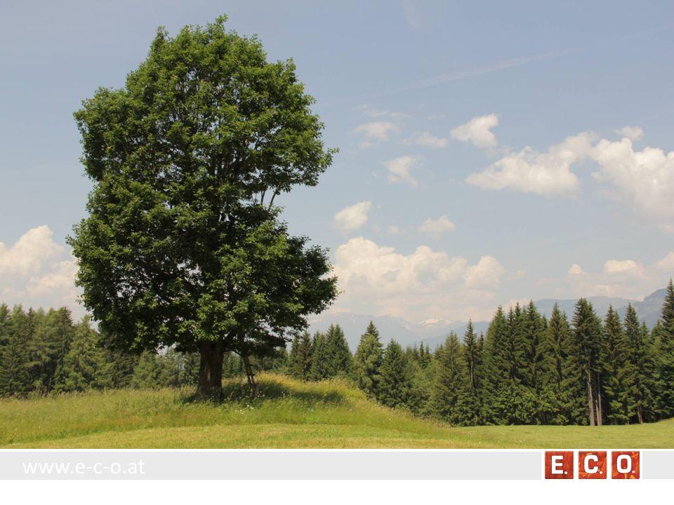 www.e-c-o.at Stand der Biotopkartierung in Österreich Bundesland WaldflächenUBA-StandardFFHEinzelbäume Burgenland???.