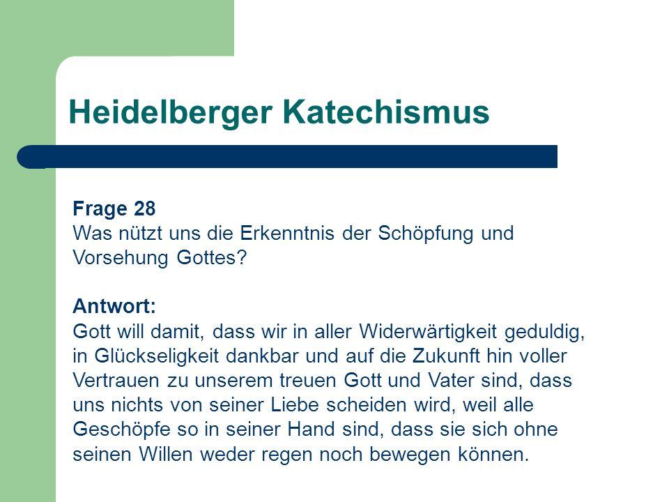 Heidelberger Katechismus Frage 28 Was nützt uns die Erkenntnis der Schöpfung und Vorsehung Gottes? Antwort: Gott will damit, dass wir in aller Widerwä