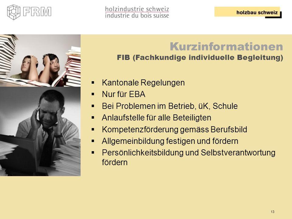 13 Kurzinformationen FIB (Fachkundige individuelle Begleitung) Kantonale Regelungen Nur für EBA Bei Problemen im Betrieb, üK, Schule Anlaufstelle für