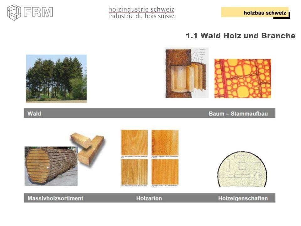 19 1.1 Wald Holz und Branche