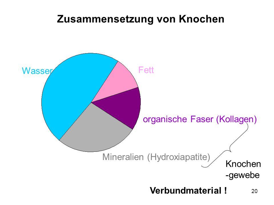 20 Zusammensetzung von Knochen Wasser Fett organische Faser (Kollagen) Mineralien (Hydroxiapatite) Knochen -gewebe Verbundmaterial !