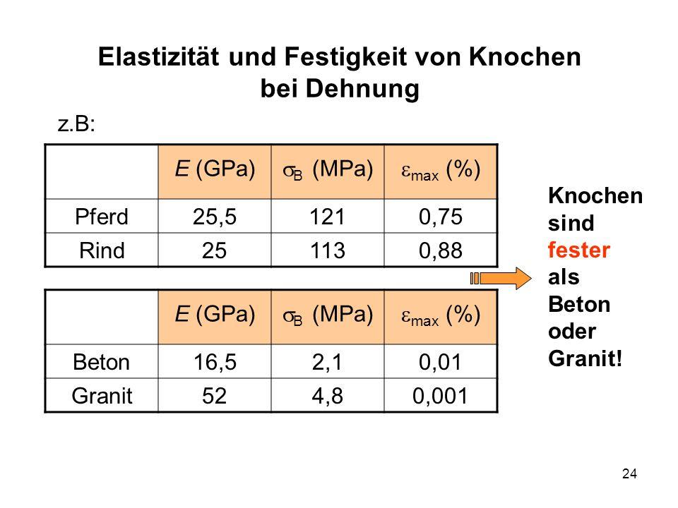 24 Elastizität und Festigkeit von Knochen bei Dehnung z.B: E (GPa) B (MPa) max (%) Pferd25,51210,75 Rind251130,88 E (GPa) B (MPa) max (%) Beton16,52,10,01 Granit524,80,001 Knochen sind fester als Beton oder Granit!