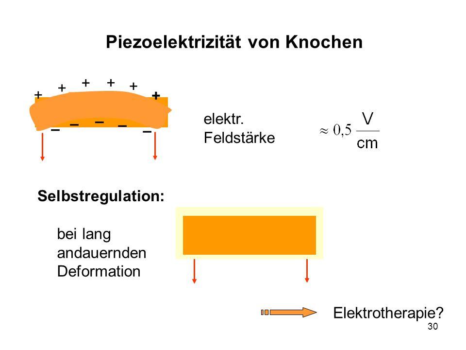 30 Piezoelektrizität von Knochen Selbstregulation: elektr. Feldstärke bei lang andauernden Deformation Elektrotherapie? – – + + + + + – + – –