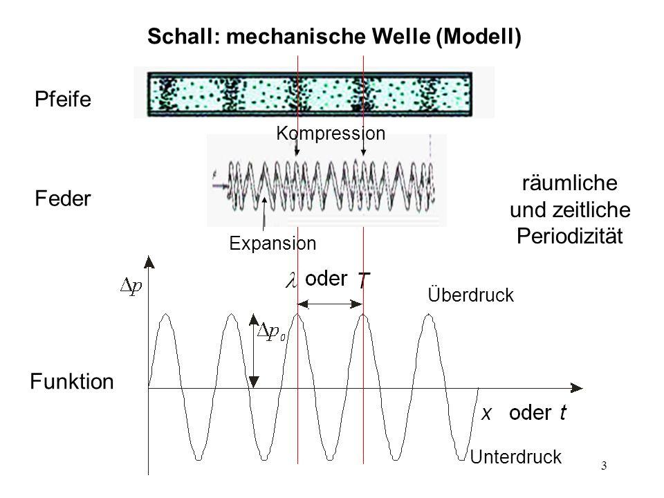 3 Schall: mechanische Welle (Modell) räumliche und zeitliche Periodizität Pfeife Feder Funktion Überdruck Unterdruck Expansion Kompression
