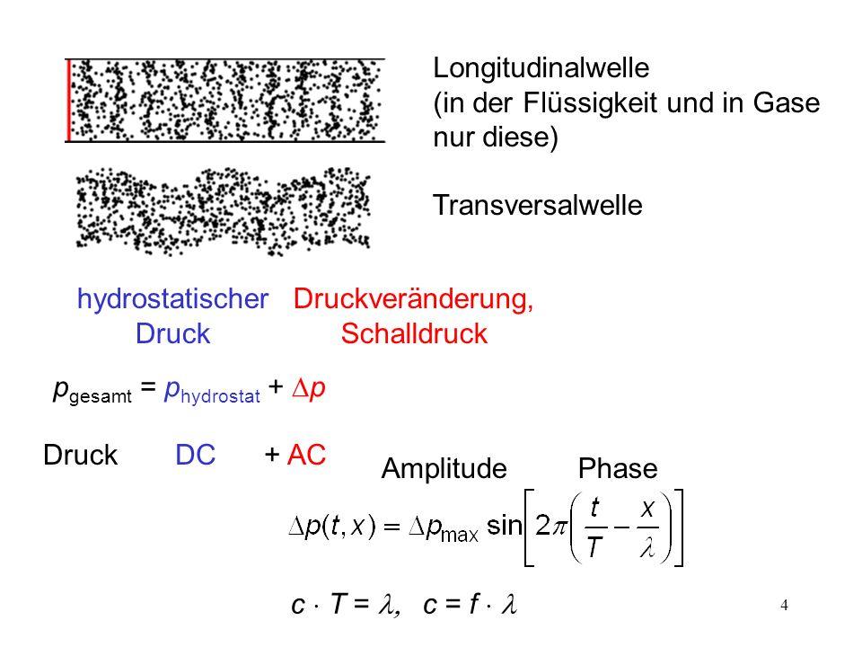 4 Longitudinalwelle (in der Flüssigkeit und in Gase nur diese) Transversalwelle AmplitudePhase Druckveränderung, Schalldruck p gesamt = p hydrostat +
