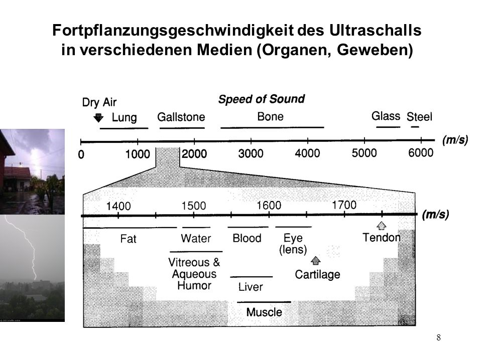 9 Fortpflanzungsgeschwindigkeit des Ultraschalls und der Wellenwiderstand in verschiedenen Medien