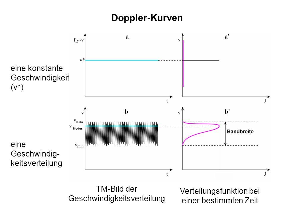 18 Doppler-Kurven Verteilungsfunktion bei einer bestimmten Zeit TM-Bild der Geschwindigkeitsverteilung eine konstante Geschwindigkeit (v*) eine Geschw