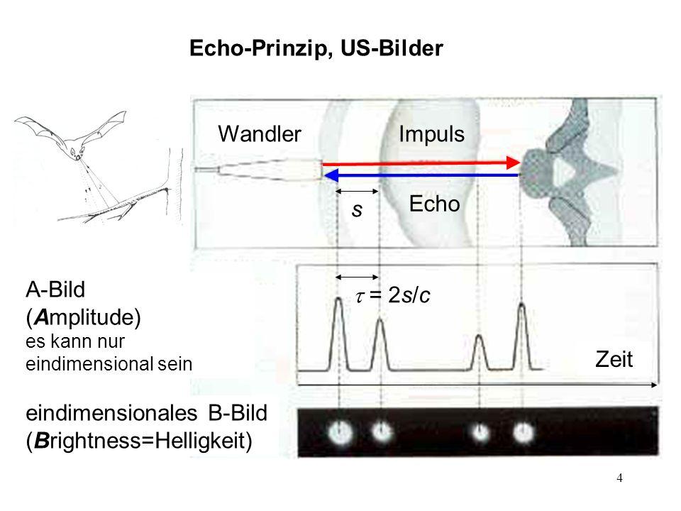 4 Wandler Echo Impuls s = 2s/c Echo-Prinzip, US-Bilder A-Bild (Amplitude) es kann nur eindimensional sein eindimensionales B-Bild (Brightness=Helligke