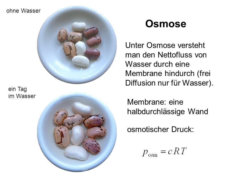 Unter Osmose versteht man den Nettofluss von Wasser durch eine Membrane hindurch (frei Diffusion nur für Wasser). Osmose ohne Wasser ein Tag im Wasser