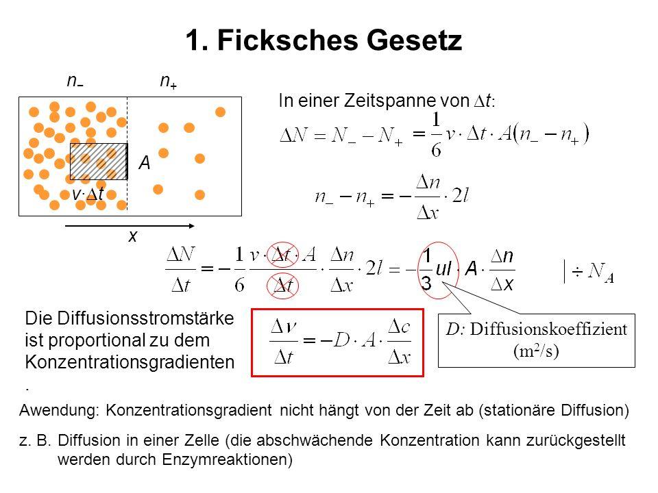 1. Ficksches Gesetz Die Diffusionsstromstärke ist proportional zu dem Konzentrationsgradienten. n n+n+ A x v· t In einer Zeitspanne von t : D: Diffusi
