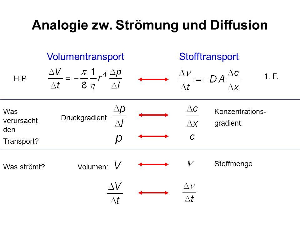 Analogie zw. Strömung und Diffusion VolumentransportStofftransport Was verursacht den Transport? Druckgradient Konzentrations- gradient: Was strömt?Vo