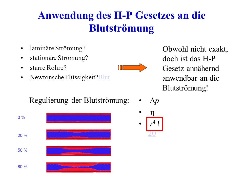 Anwendung des H-P Gesetzes an die Blutströmung laminäre Strömung? stationäre Strömung? starre Röhre? Newtonsche Flüssigkeit?BlutBlut Obwohl nicht exak