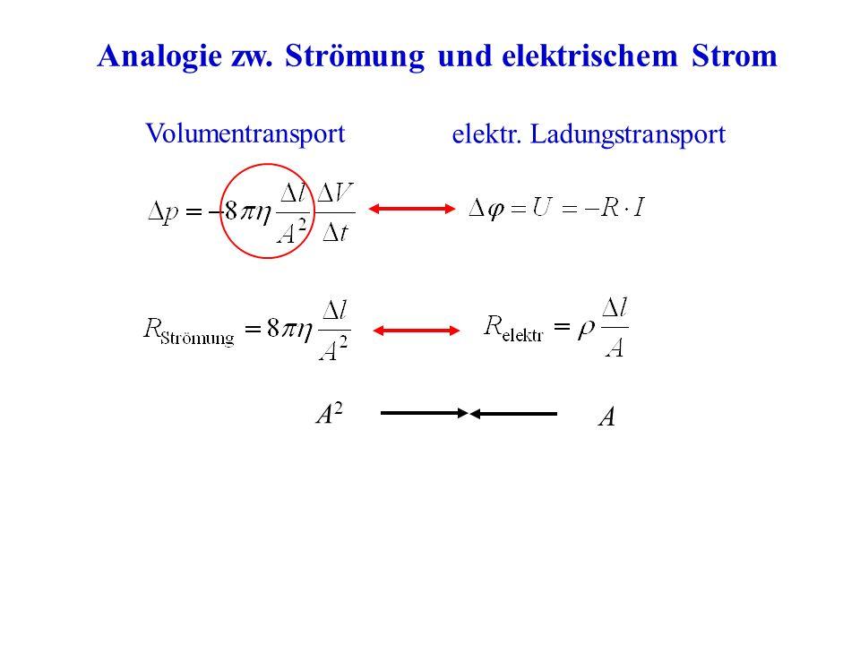 Analogie zw. Strömung und elektrischem Strom Volumentransport elektr. Ladungstransport A2A2 A