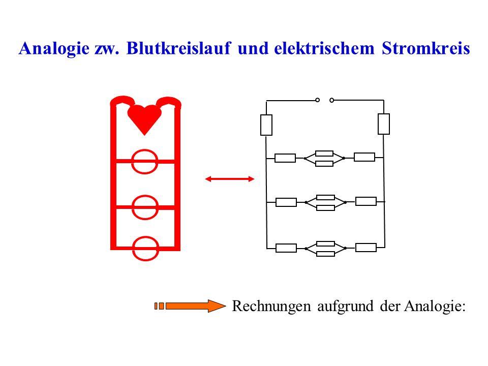 Analogie zw. Blutkreislauf und elektrischem Stromkreis Rechnungen aufgrund der Analogie: