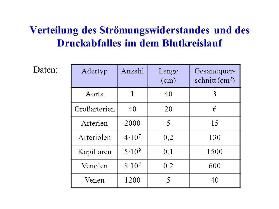 Verteilung des Strömungswiderstandes und des Druckabfalles im dem Blutkreislauf AdertypAnzahlLänge (cm) Gesamtquer- schnitt (cm 2 ) Aorta1403 Großarterien40206 Arterien2000515 Arteriolen4·10 7 0,2130 Kapillaren5·10 9 0,11500 Venolen8·10 7 0,2600 Venen1200540 Daten: