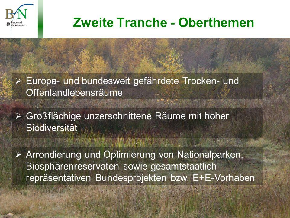 Potsdam, 19.11.10, Dr.