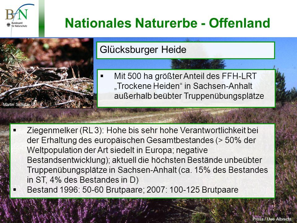 Potsdam, 19.11.10, Dr.Hans-Jürgen Schäfer, BfN Nationales Naturerbe - 2.