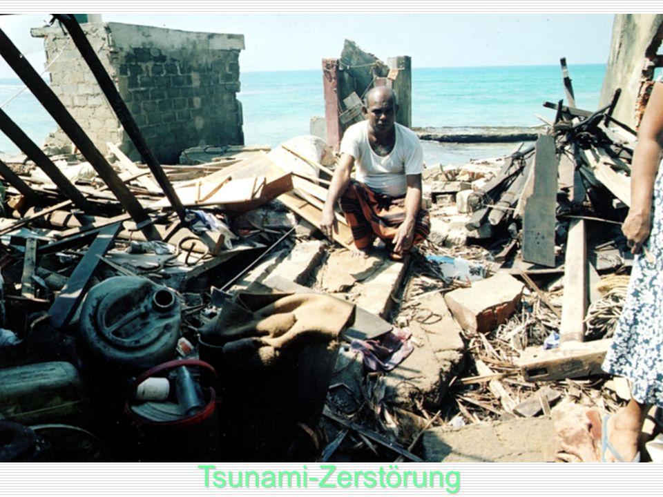 Tsunami-Zerstörung Tsunami-Zerstörung