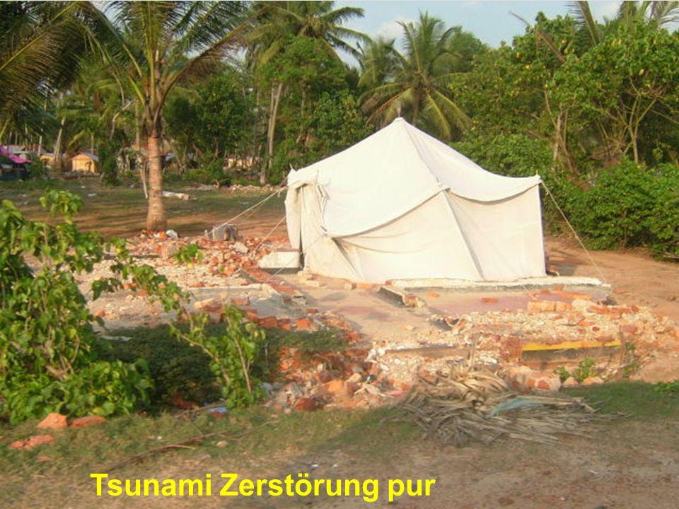 Tsunami Zerstörung pur
