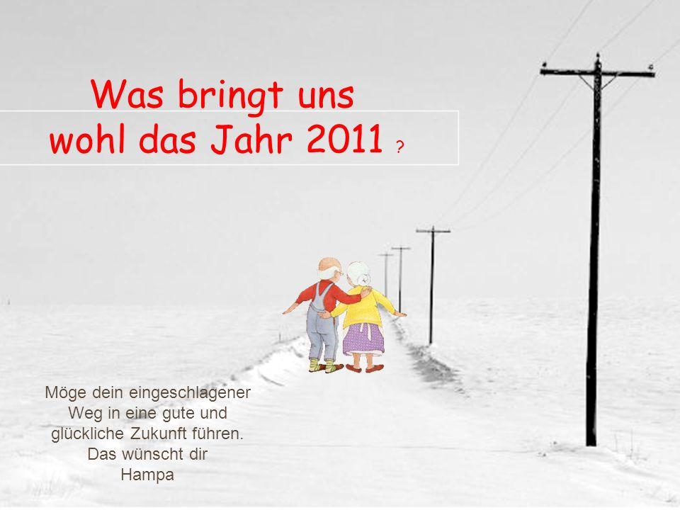Wie in so vielen Touristen-Destinationen tummelten sich auch in Wildhaus an Silvester 2010 unzählige Sportler, Tagesbesucher und FerienhausbesitzerInn