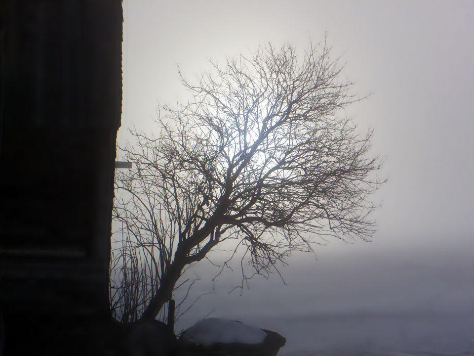 Oberhalb des Schwendisees lichtet sich der Nebel