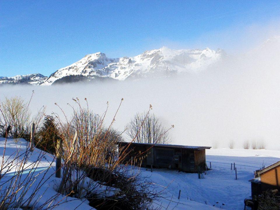 Die Schafbergwand halb im Nebel