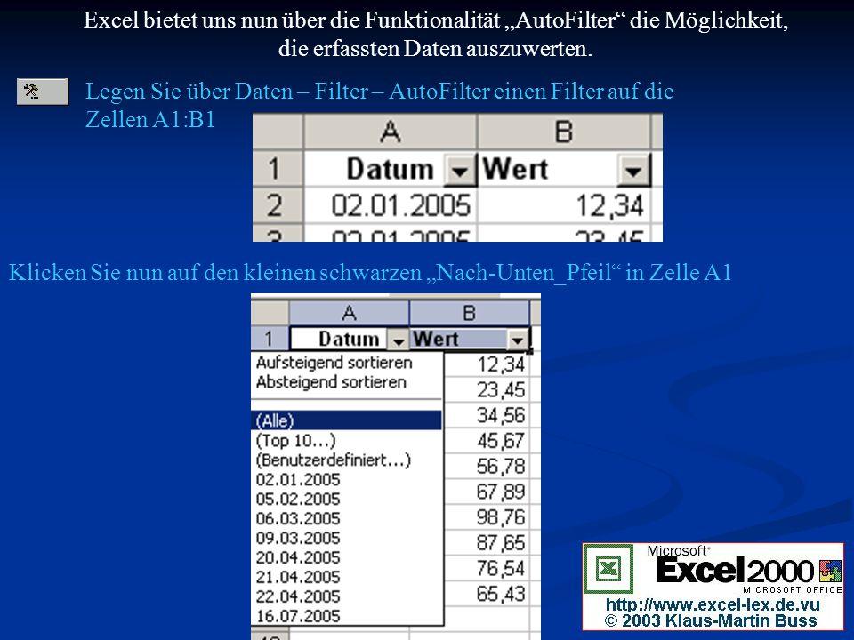 Excel bietet uns nun über die Funktionalität AutoFilter die Möglichkeit, die erfassten Daten auszuwerten.