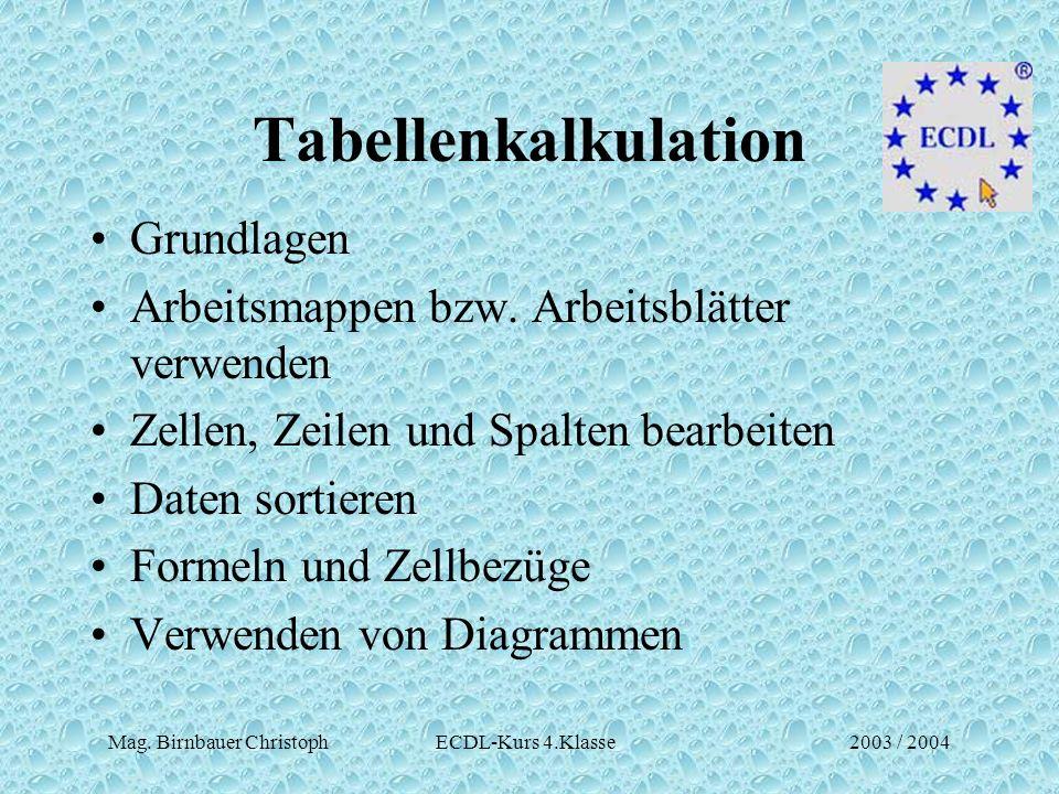 Mag. Birnbauer Christoph ECDL-Kurs 4.Klasse2003 / 2004 Tabellenkalkulation Grundlagen Arbeitsmappen bzw. Arbeitsblätter verwenden Zellen, Zeilen und S