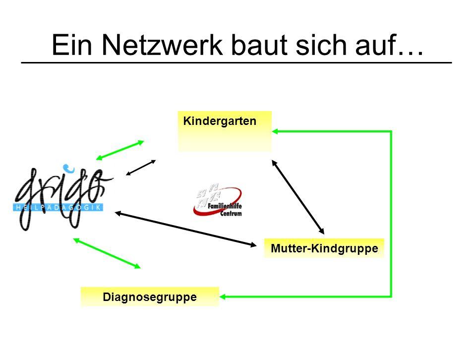 Ein Netzwerk baut sich auf… Kindergarten Mutter-Kindgruppe Diagnosegruppe