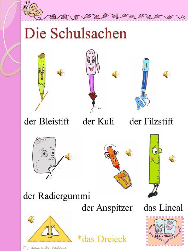 Die Schulsachen der Bleistift der Kuli der Filzstift der Radiergummi der Anspitzer das Lineal Mgr.