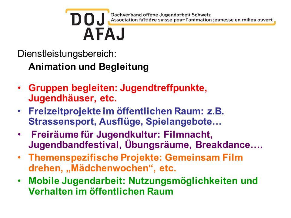 Dienstleistungsbereich: Animation und Begleitung Gruppen begleiten: Jugendtreffpunkte, Jugendhäuser, etc. Freizeitprojekte im öffentlichen Raum: z.B.