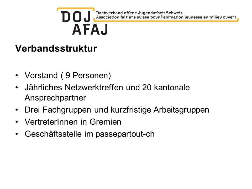 Verbandsstruktur Vorstand ( 9 Personen) Jährliches Netzwerktreffen und 20 kantonale Ansprechpartner Drei Fachgruppen und kurzfristige Arbeitsgruppen V