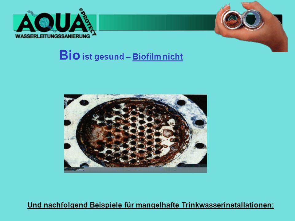 Bio ist gesund – Biofilm nicht Und nachfolgend Beispiele für mangelhafte Trinkwasserinstallationen: