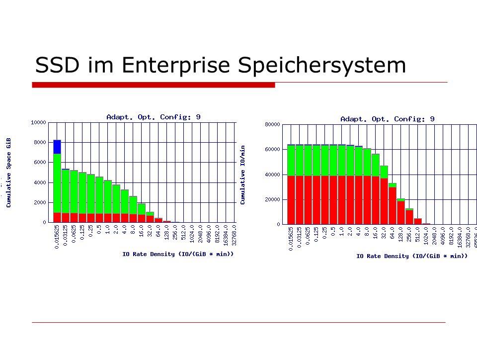 SSD im Enterprise Speichersystem
