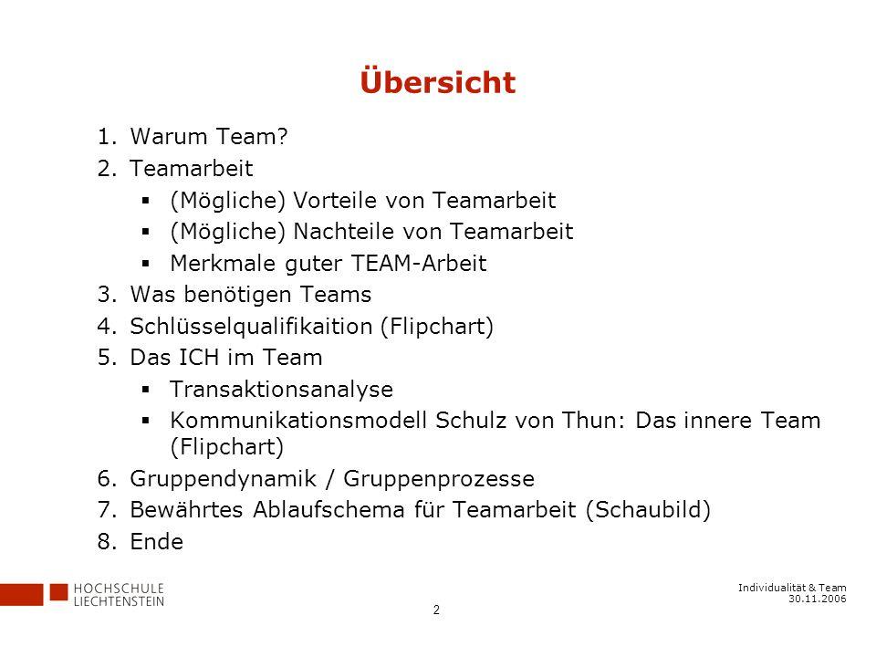 Individualität & Team 30.11.2006 2 Übersicht 1.Warum Team.