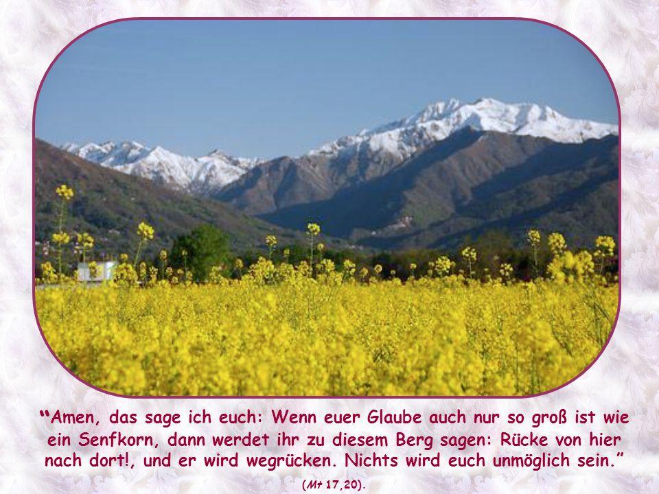 Ein solcher Glaube kann Berge versetzen. Er ist nicht einigen wenigen außergewöhnlichen Menschen vorbehalten; alle Gläubigen können und sollen einen s