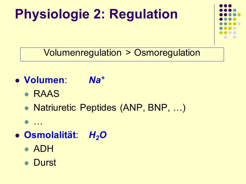 Physiologie 2: Regulation Volumen: Na + RAAS Natriuretic Peptides (ANP, BNP, …) … Osmolalität:H 2 O ADH Durst Volumenregulation > Osmoregulation