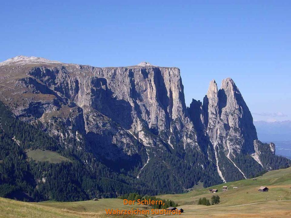 Der Langkofel mit der Seiser Alm, Europas höchster Hochalm
