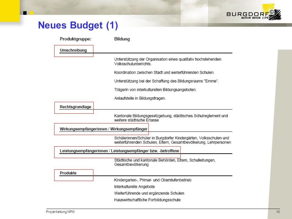 Projektleitung NPM10 Neues Budget (1)
