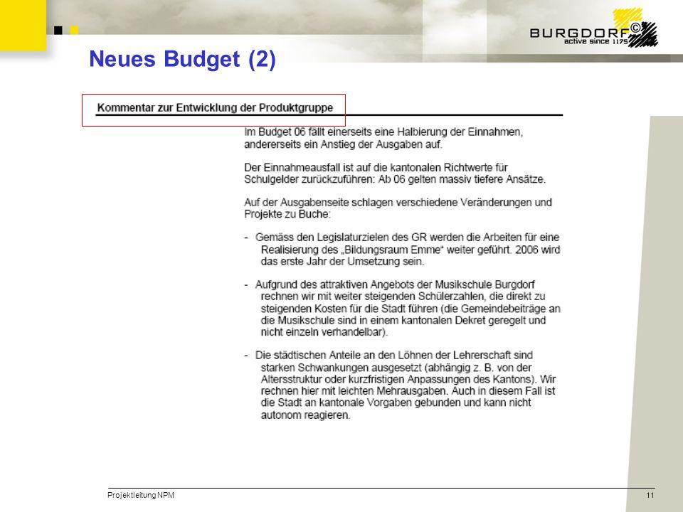 Projektleitung NPM11 Neues Budget (2)