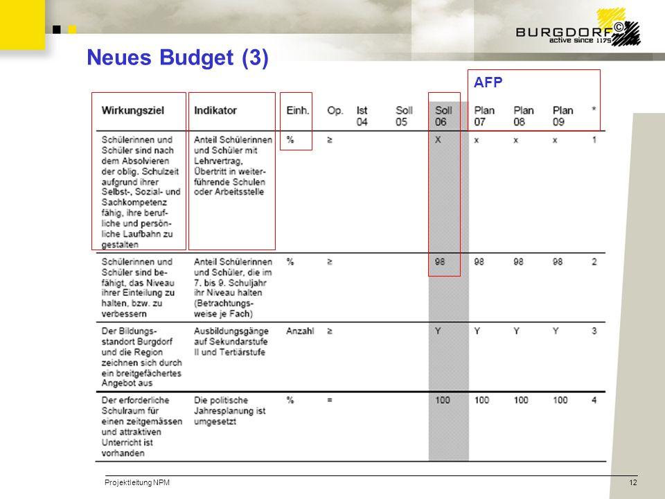 Projektleitung NPM12 Neues Budget (3) AFP