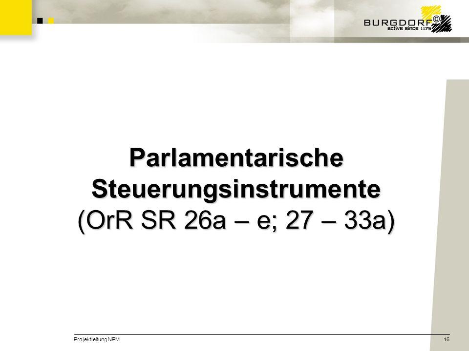 Projektleitung NPM16 Parlamentarische Steuerungsinstrumente (OrR SR 26a – e; 27 – 33a)