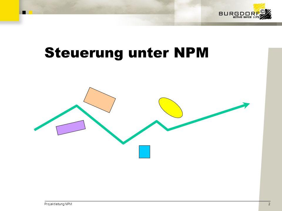 Projektleitung NPM2 Steuerung unter NPM