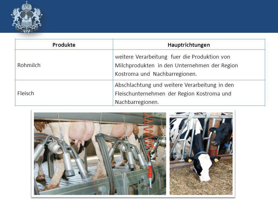 ProdukteHauptrichtungen Rohmilch weitere Verarbeitung fuer die Produktion von Milchprodukten in den Unternehmen der Region Kostroma und Nachbarregionen.