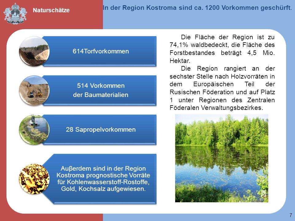 7 In der Region Kostroma sind ca. 1200 Vorkommen geschürft. Naturschätze 614Torfvorkommen 514 Vorkommen der Baumaterialien 28 Sapropelvorkommen Auβerd