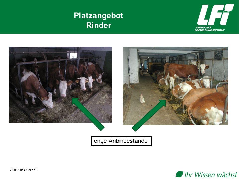 20.05.2014 /Folie 16 Platzangebot Rinder enge Anbindestände