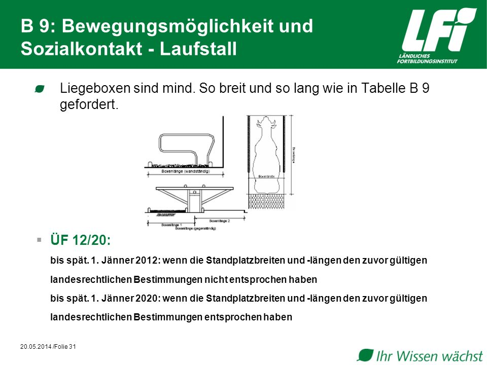 B 9: Bewegungsmöglichkeit und Sozialkontakt - Laufstall Liegeboxen sind mind. So breit und so lang wie in Tabelle B 9 gefordert. 20.05.2014 /Folie 31